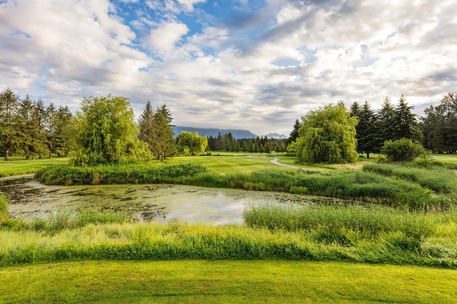 Pitt Meadows Golf Course May 2018-152 small